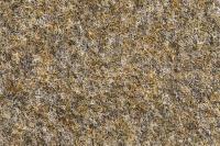 Stone 62