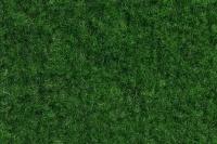 Green 24